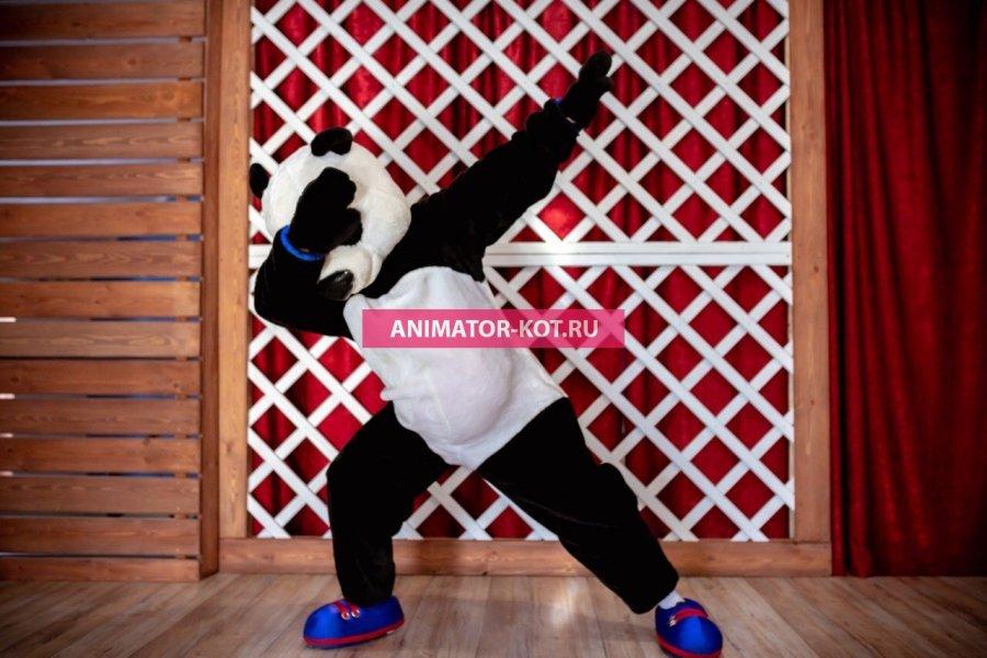 Аниматор Панда (День рОждения) Екатеринбург